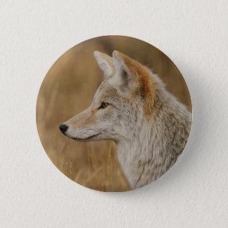 coyote pinback button