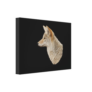 Coyote Profile Stretched Canvas Print