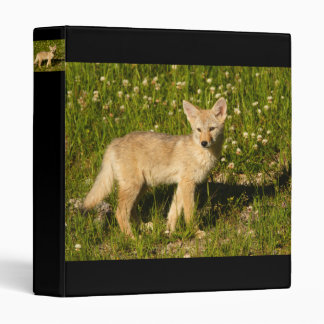 coyote pup 3 ring binder