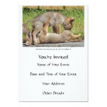 Coyote Pups Biting and Playing Personalized Invites