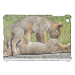 Coyote Pups Biting and Playing Case For The iPad Mini
