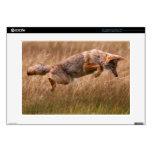 Coyote que salta - prados del Gibbon 38,1cm Portátil Calcomanías