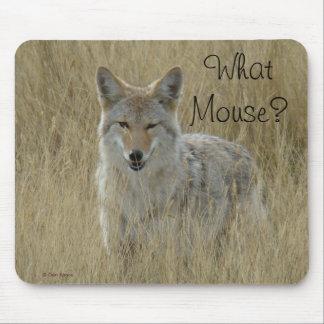 Coyote R0002 Tapete De Raton