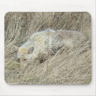 Coyote R0013 en cojín de ratón alto de la hierba Tapetes De Raton