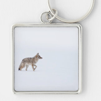 Coyote Silver-Colored Square Keychain