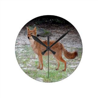 Coyote (South Dakota) Round Clock