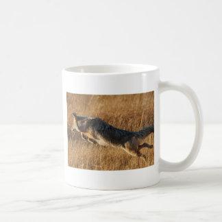 coyote taza de café