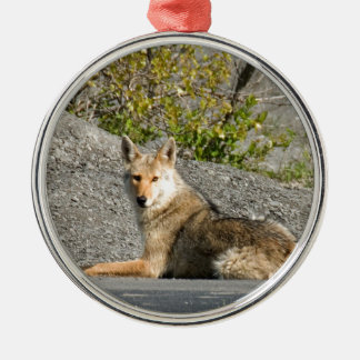 coyote waiting for true love metal ornament