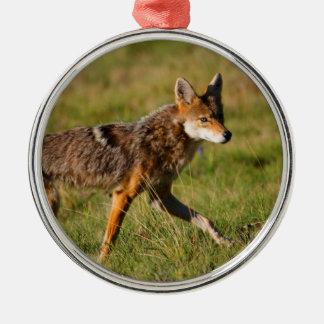 coyote walking metal ornament