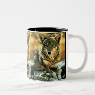 Coyote, Wildlife Lovers Gifts Two-Tone Coffee Mug