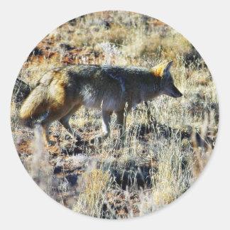 Coyotes Anilmal salvaje del Fox en campo Pegatina Redonda