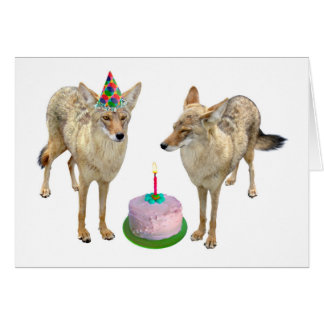 Coyotes Birthday Card