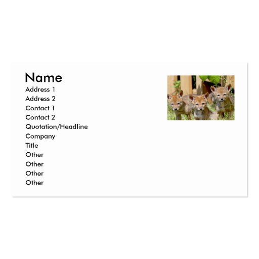 Coyotes Double-Sided Standard Business Cards (Pack Of 100)