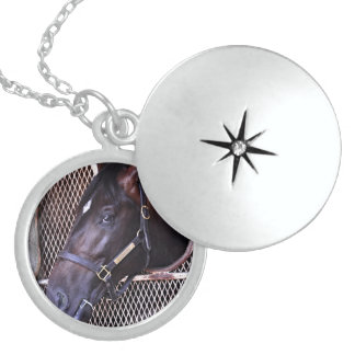 Cozmic One at Historic Saratoga Locket Necklace