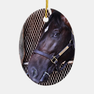Cozmic One at Historic Saratoga Christmas Ornaments