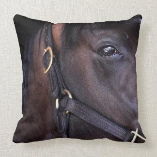 Cozmic One at Historic Saratoga Pillows