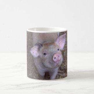 'Cozmico' the Happy Pig Mug