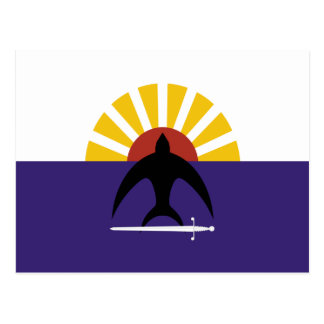 Cozumel, bandera de Quintana Roo, México, México Tarjeta Postal