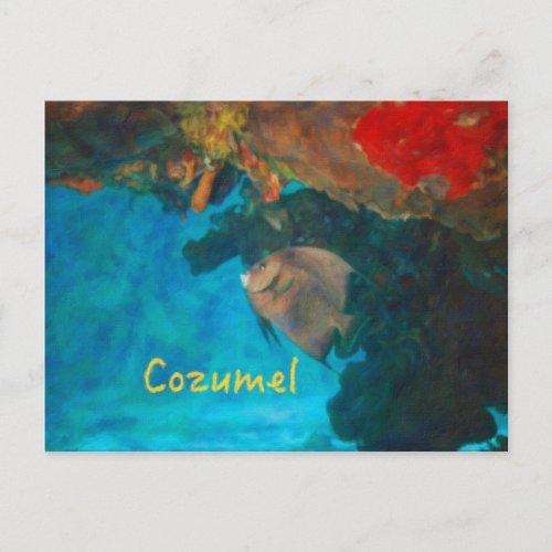 Cozumel Coral Reef Postcard