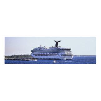 Cozumel Cruise Ship Visitor Panel Wall Art