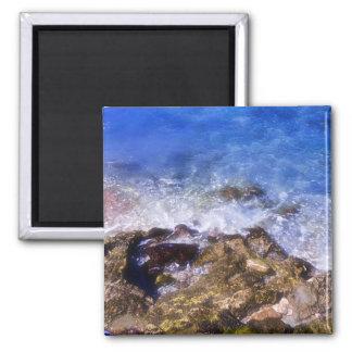 Cozumel Dock Rocks Magnet