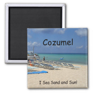 Cozumel, I Sea Sand and Sun! 2 Inch Square Magnet