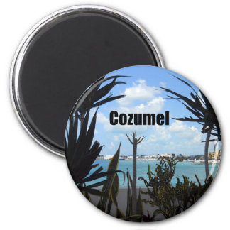Cozumel 2 Inch Round Magnet