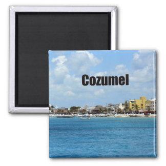 Cozumel 2 Inch Square Magnet