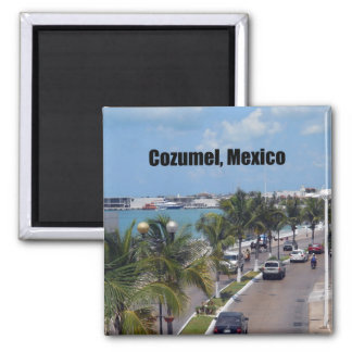 Cozumel, Mexico 2 Inch Square Magnet