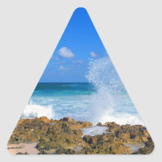 Cozumel Mexico Beach Wave Splash Water Spout Teal Triangle Sticker