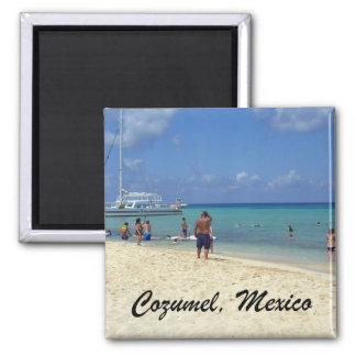 Cozumel, Mexico Fridge Magnet