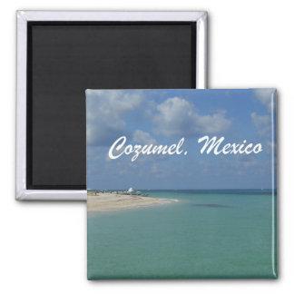 Cozumel Mexico Fridge Magnets
