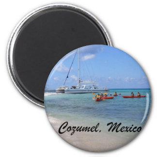 Cozumel, Mexico Refrigerator Magnet