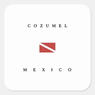 Cozumel Mexico Scuba Dive Flag Square Sticker