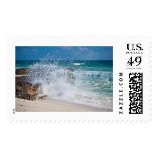 Cozumel Ocean Stamp