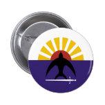 Cozumel, Quintana Roo, Mexico, Mexico flag Pinback Buttons