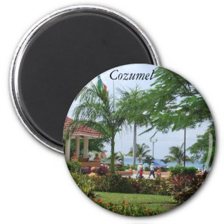 Cozumel Tropical Palm Tree 2 Inch Round Magnet