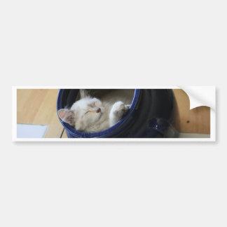 Cozy Cat Bumper Sticker