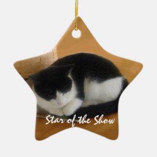 Cozy Cat Ceramic Ornament