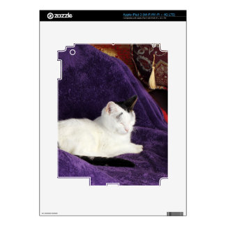 Cozy Cat Kitty Napping Happy Decal For iPad 3