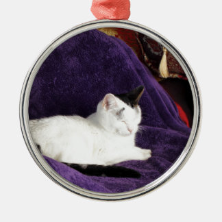 Cozy Cat Kitty Napping Happy Metal Ornament
