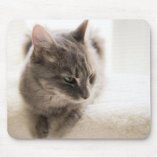 Cozy Cat Mousepad
