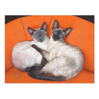 Cozy Couple Siamese Cat Post Card