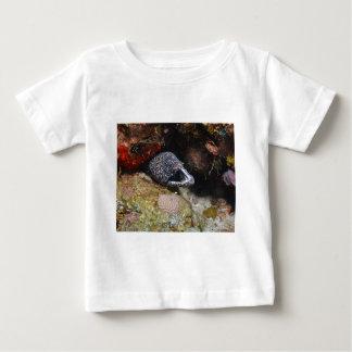 Cozy Eel Baby T-Shirt