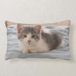 Cozy Kitten Lumbar Pillow