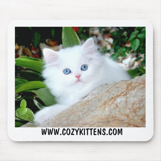 Cozy Kittens Heaven On Earth Mouse Pad