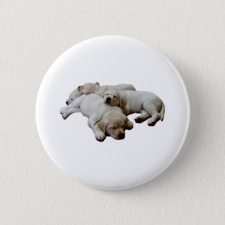Cozy Labs Button
