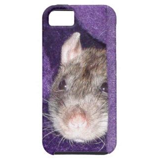 cozy rat iPhone SE/5/5s case