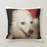 Cozy Throw Pillow - multiple sizes available