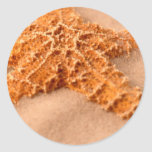 cp ion sand cl-up classic round sticker